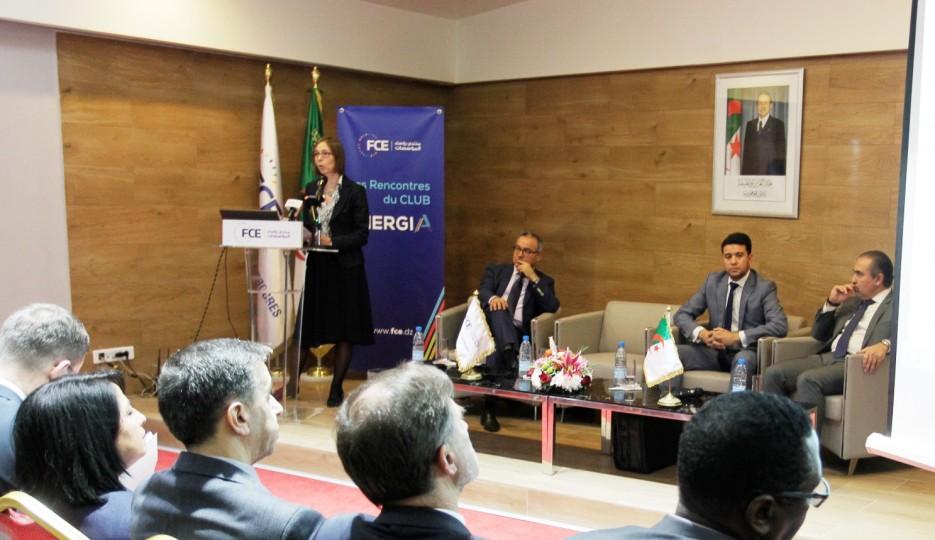 Lors d'une rencontre sur les énergies renouvelables :  La SFI propose ses solutions